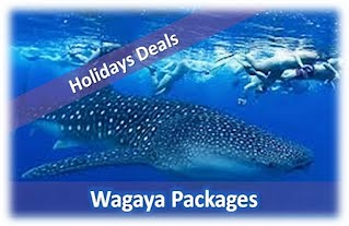 Wagaya Holiday Packages, Barra, Inhambane
